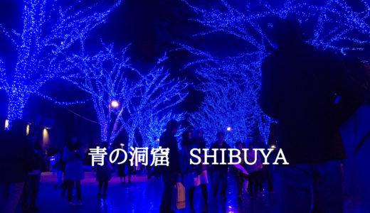 表参道のイルミネーション  青の洞窟がきれい!加藤綾子アナも点灯式に!